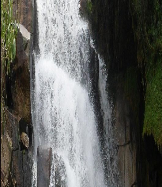 Imagen89
